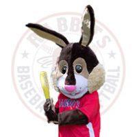 rabbits-vignettes-site