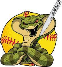 Logo-Cobras-Contes